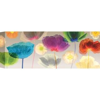 Robert Mertens 'Poppy Panorama' Wall Art - Multi