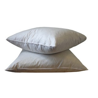 20 x 20-inch Feather Down Pillows Inserts (Pack of 2)