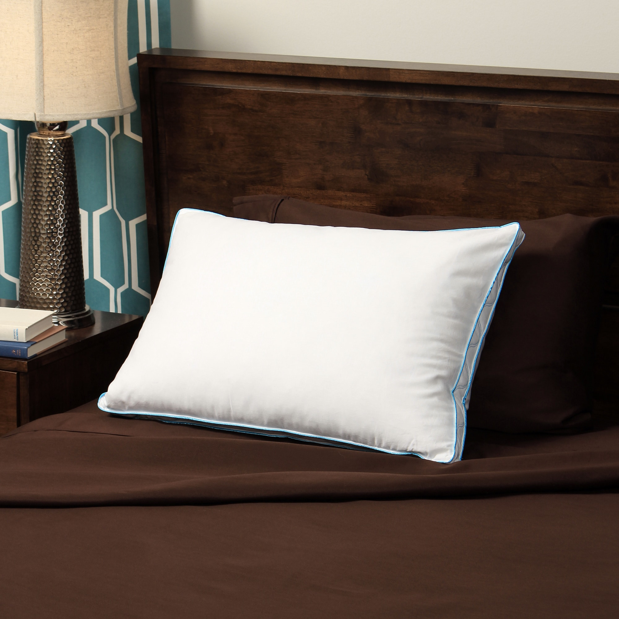 Overstock.com CozyClouds by DownLinens Feather and Down Compartment Pillow