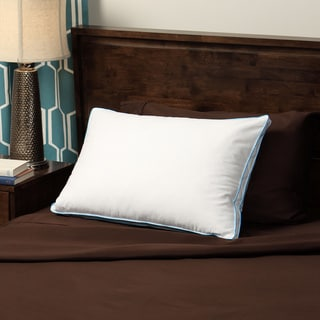 CozyClouds by DownLinens Feather and Down Compartment Pillow