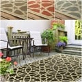 nuLOOM Indoor/ Outdoor Porch Rug (5' x 8')