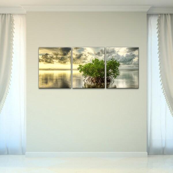 bruce bain 39 mangrove 39 3 piece canvas wall art 16312879. Black Bedroom Furniture Sets. Home Design Ideas