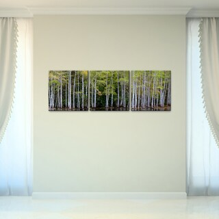 Bruce Bain 'Cypress Forest' Canvas Wall Art (3-piece Set)
