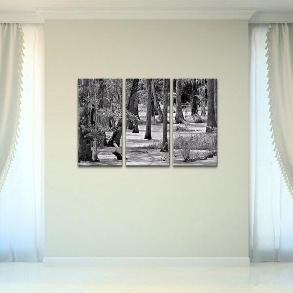 bruce bain 39 swamp 39 canvas wall art 3 piece set. Black Bedroom Furniture Sets. Home Design Ideas