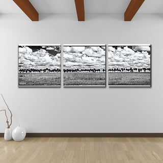 Bruce Bain 'Palms' Canvas Wall Art (3-piece Set)