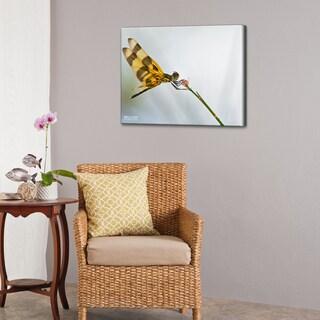 Bruce Bain 'Dragon Fly' Canvas Wall Art