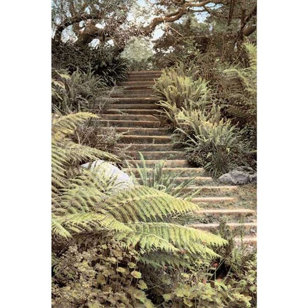 Laura Culver 'Secret Steps' Canvas Art