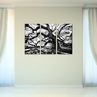 Bruce Bain 'Oak' 3-piece Set Canvas Wall Art