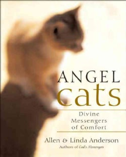 Angel Cats: Divine Messengers Of Comfort (Paperback)