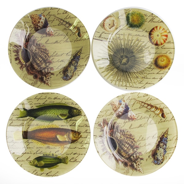 Notions starfish set of 4 canape plate 16343007 for How to make canape shells