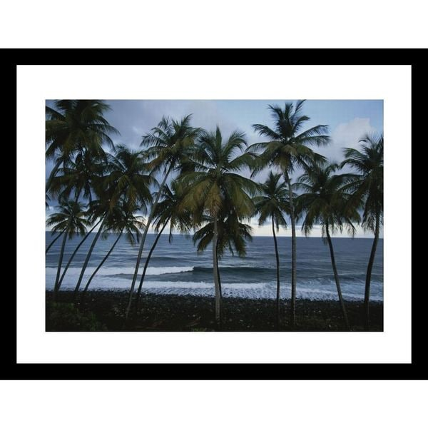 Michael Melford 'A row of palm trees lines the beach shore' Framed Photo