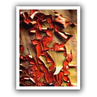 Dean Uhlinger 'Madrone Bark Detail' Unwrapped Canvas