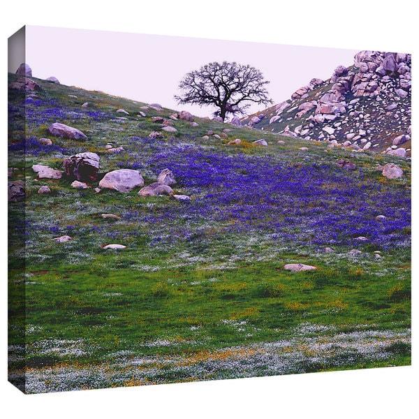 Dean Uhlinger 'Sierra Foothills Spring' Gallery-wrapped Canvas - Multi 13236762