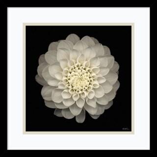 Dahlia 22' Framed Art Print 17 x 17-inch