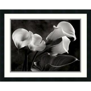 Sondra Wampler 'Calla Lilies No. 1' Framed Art Print 26 x 22-inch