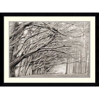 Chris Honeysett 'Crystal Grove' Framed Art Print 43 x 32-inch