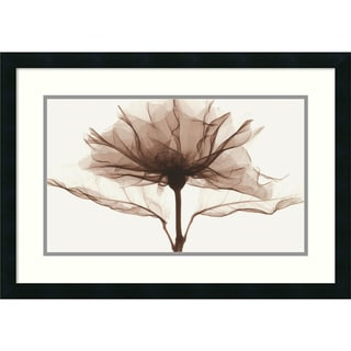 Steven N. Meyers 'A Rose' Framed Art Print 27 x 19-inch