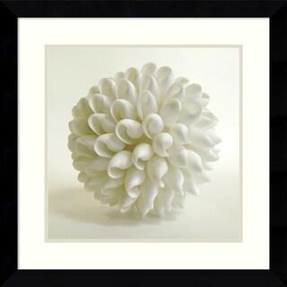 Darlene Shiels 'Shell III' Framed Art Print 27 x 27-inch