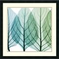 Steven N. Meyers 'Celosia Leaves I' Framed Art Print 26 x 26-inch