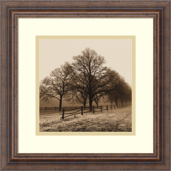 Harold Silverman 'Row of Trees' Framed Art Print 14 x 14-inch