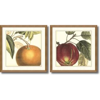 Vision Studio 'Graphic Orange & Apple- set of 2' Framed Art Print 17 x 17-inch Each