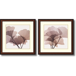 Steven N. Meyers 'Gingko Leaves- set of 2' Framed Art Print 27 x 27-inch Each
