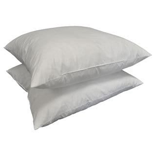 Square 24-inch Feather Pillow Insert (Set of 2)