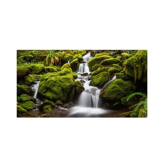 Pierre Leclerc 'Green Moss Stream' Canvas Art