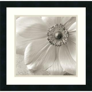 Sondra Wampler 'Poppy Study II' Framed Art Print 18 x 18-inch