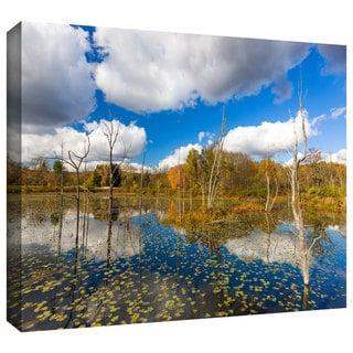 Cody York 'Beaver Marsh' Gallery-wrapped Canvas