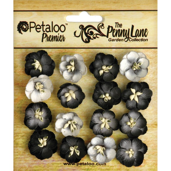 Penny Lane Forget Me Nots 16/Pkg-Black