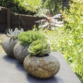 Hand-crafted River Stone Planter, Handmade in Indonesia