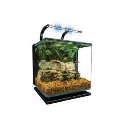 3 Gallon Contour Aquarium Kit