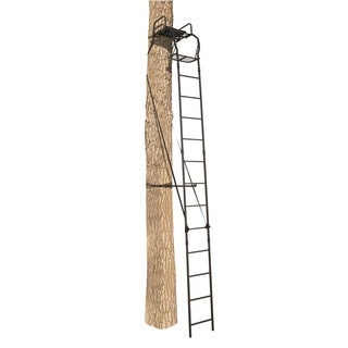 Big Game Warrior Pro Ladderstand