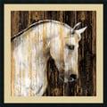 Martin Rose 'Horse II' Framed Art Print 34 x 34-inch