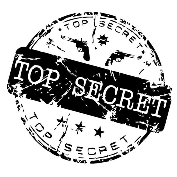 Top Secret Seal Wall Vinyl Art