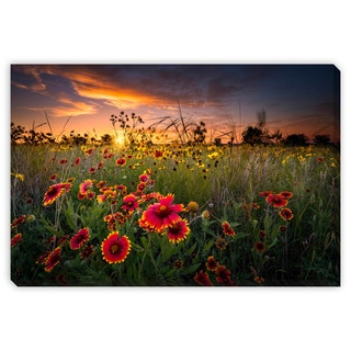 Dfikar 'Texas Wildflowers at Sunrise' Gallery Wrapped Canvas Art