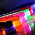 OxGord LED Light-up Pet Collar