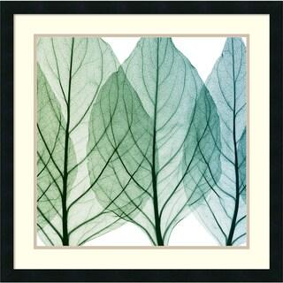 Steven N. Meyers 'Celosia Leaves II' Framed Art Print 26 x 26-inch