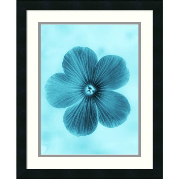 Teton Parchment 'Forget Me Not Blue II' Framed Art Print 18 x 22-inch