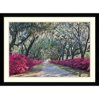 Winthrope Hiers 'Azaleas, Bonaventure' Framed Art Print 43 x 31-inch