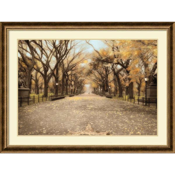 Timothy Wampler 'Central Park I' Framed Art Print 44 x 33-inch
