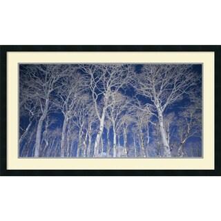 Micha Pawlitzki 'Birch Trees' Framed Art Print 42 x 25-inch