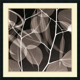 Steven N. Meyers 'Eucalyptus Leaves (Negative)' Framed Art Print 34 x 34-inch
