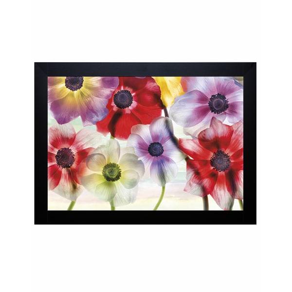 Harold Davis 'Vibrance' Framed Art Print 13397649