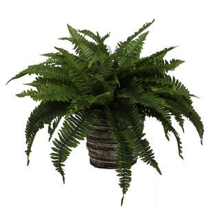 Christopher Knight Home Boston Fern in Wild Wicker Basket