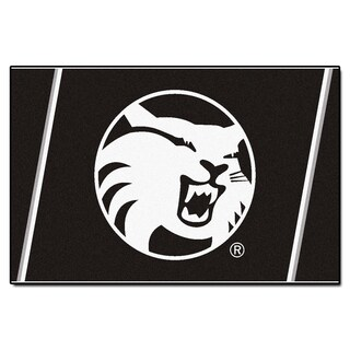 Fanmats NCAA Cal State, Chico Area Rug (5' x 8')