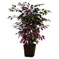 Christopher Knight Home 4-foot Capensia Bush in Square Willow