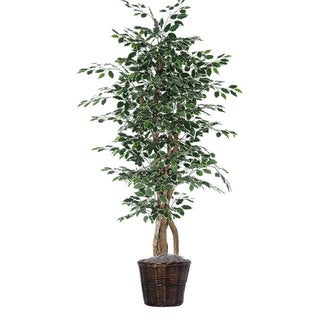 Christopher Knight Home 6-foot Variegated Ficus Executive