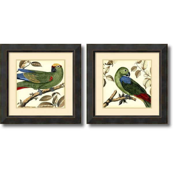 Martinet 'Tropical Parrot- set of 2' Framed Art Print 23 x 23-inch Each
